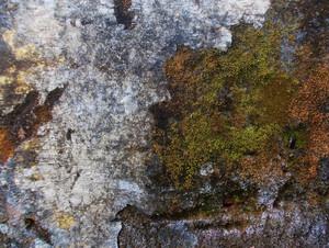 Concrete Texture 4