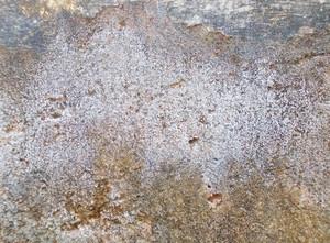 Concrete Texture 5
