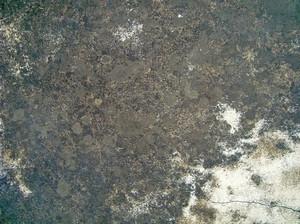 Concrete_dirty_texture