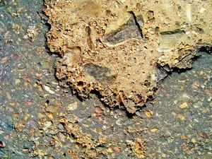 Concrete_road