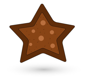 Cookie Style Christmas Star
