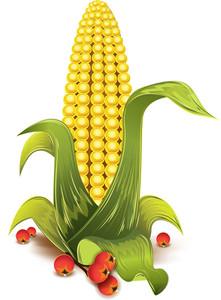 Corn Vector Element