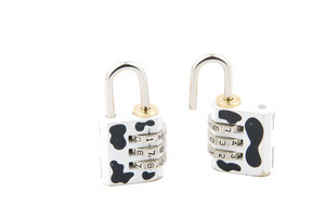 Cow Pattern Combination Padlock On White