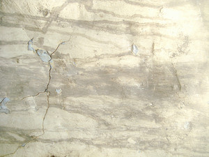 Cracked_concrete_surface_wall