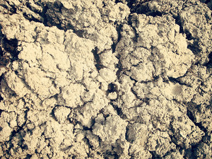 Cracked_dried_mud_texture