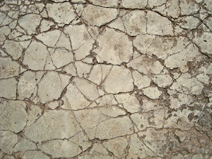 Cracked_ground_texture