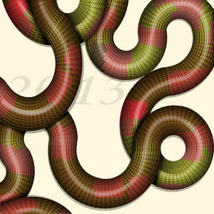 Creative Background With Stylized Snakes