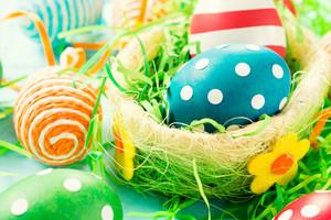 Creative Eggs In Basket
