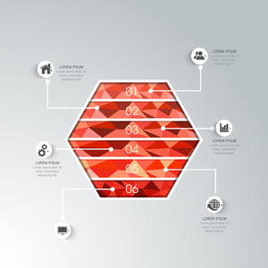Creative infographic element in hexagon shape with web icons for business reports and presentation.