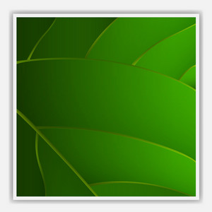 Creative Leaf Background
