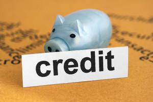 Credit And Piggy Bank
