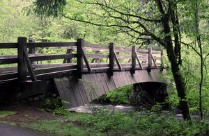 Creek Bridge