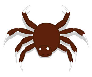 Creepy Spider Animal Vector