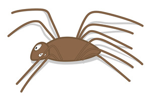 Creepy Spider Shape
