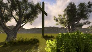 Cross在自然