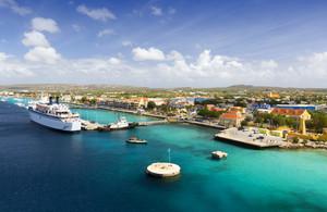 Cruise ship at a tropical port