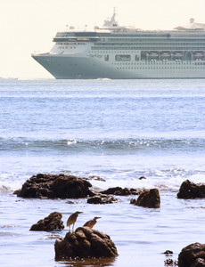 Cruise Ship Sailing Near The Seashore