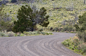 Curvy Gravel Road