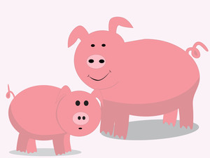 Cute Pig Illustration
