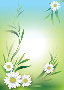 Daisies Floral Background