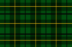 Dark Green Tartan Vector