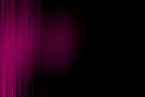 Dark Pink Backdrop