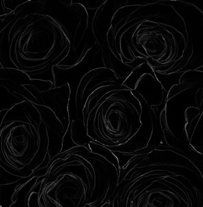 Dark Roses Background