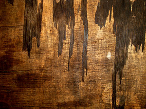 Dark_wood_texture