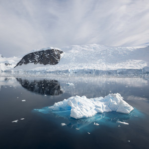 Sunlit, snowy coast and ice floe under a grey sky