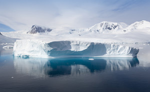 Sunlit, snowy coast and iceberg