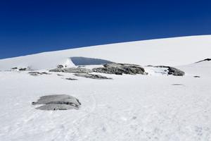 Close up of a snowy coast under a blue sky