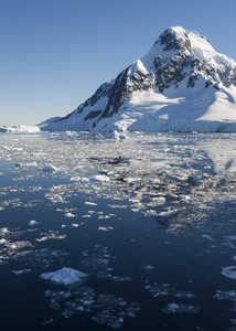 Sunlit, snowy coast and icy waters