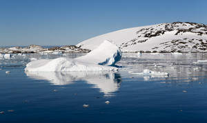 Iceberg along a sunlit, snowy coast