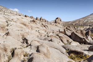 Sunlit, rocky cliffs and desert vegetation