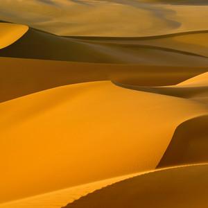 Wind-patterned desert sand dunes