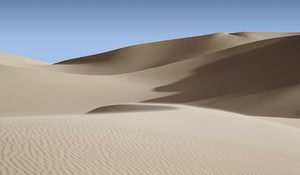 Sunlit sand dunes in the desert under a blue sky