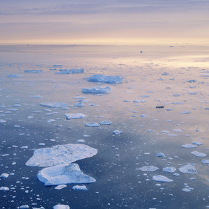Sunlit ice floes at dawn