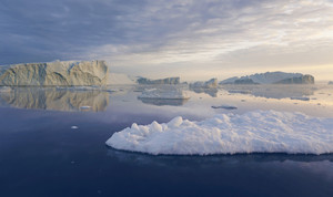 Sunlit icebergs reflected in deep blue water at dawn