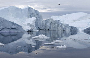 Towering icebergs reflected under a grey sky