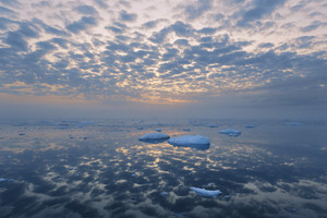 Ice floe during a golden sunset
