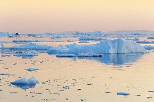 Field of ice floes along the coast at dusk