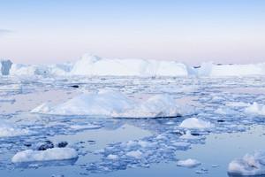 Iceberg and ice floe along the coast at dawn