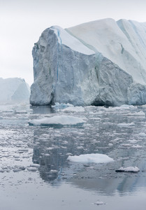 Icebergs reflected in icy waters under a grey sky