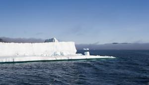 Sunlit icebergs along a foggy coast