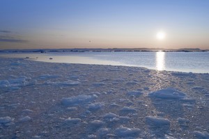 Sunset over a field of ice floes