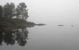 Lago Rocky e em terra na névoa grossa