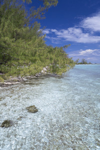 Rocky, clear water and a tropical shore