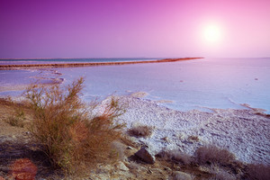 Dead sea salty shore at sunrise