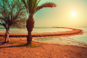 Dead Sea shore in Ein Gedi at sunrise