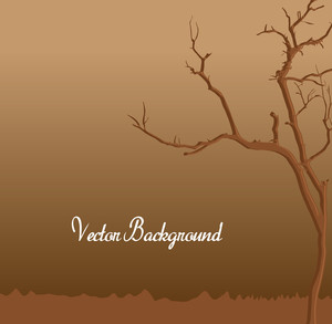 Dead Tree Background
